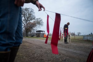 """Red flags known as """"fladry"""" act as a deterrent to predators on the ranch."""
