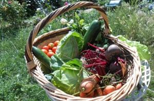 Basket of veg at La Valdieu, France