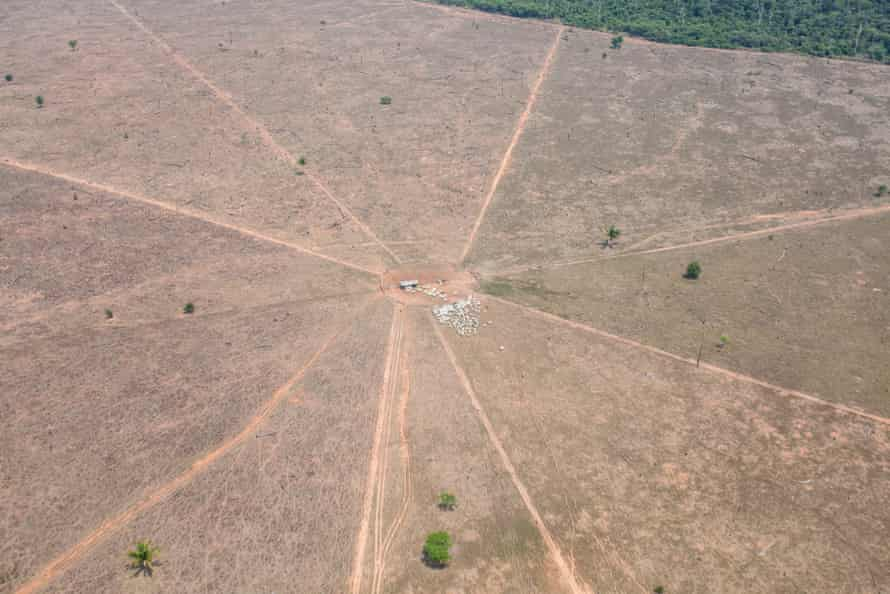 A cattle farm on indigenous land is seen from the air.