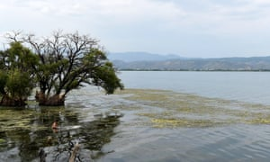 One of the lakes mentioned in study Photo taken in July 2015 shows Erhai Lake in Dali, in southwest China's Yunnan Province. Yunnan plans to spend 26.4bn yuan (US$4.1bn) to tackle pollution in the Erhai Lake, which saw blooms of blue green algae in 1996 and 2003.