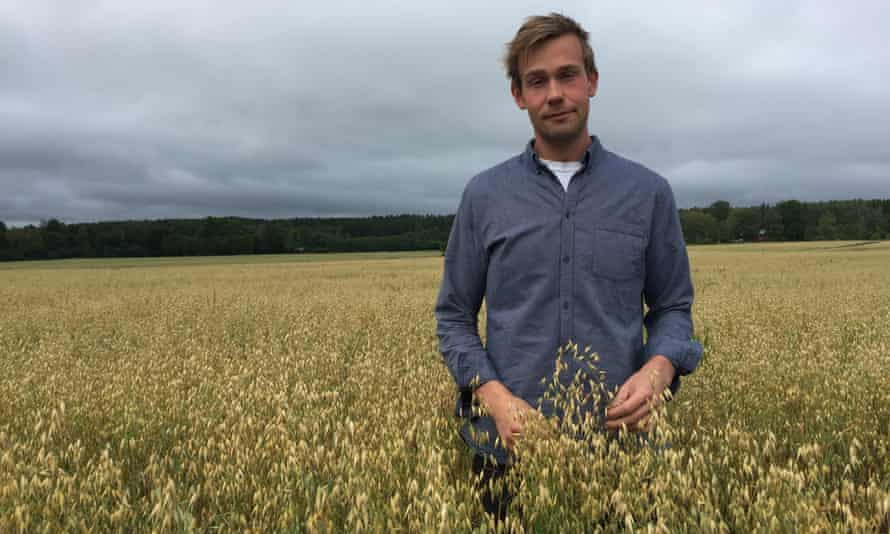 Adam Arnesson in a field of oats at his organic farm in Örebro country, Sweden