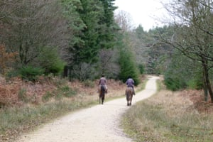 Riders in South Oakley Inclosure, New Forest.