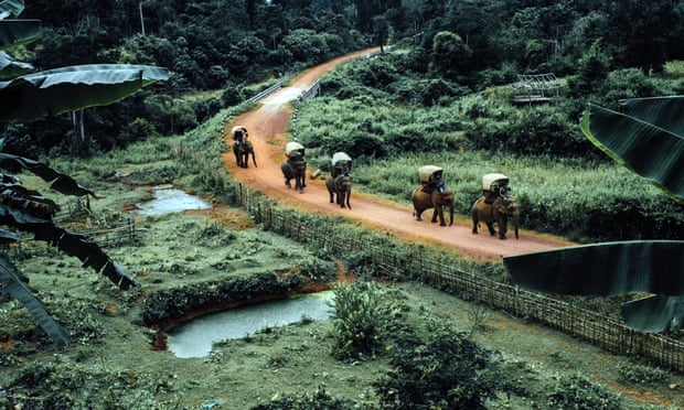 Trunk route … a previous Elephant Caravan troops through Laos. The animals won't be ridden this year.