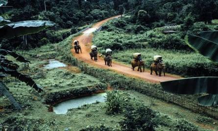 A previous Elephant Caravan troops through Laos.