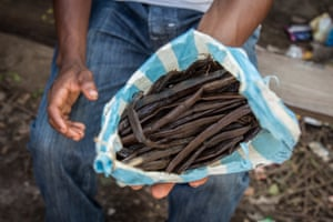 When vanilla isn't properly cured and sun-dried, it contains a lot of moisture - making the cash crop heavier and thus more expensive.