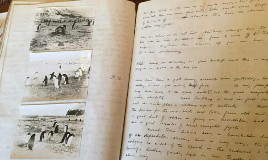 Levick's notebooks, from observations of an Adélie penguin colony, include the birds' shocking sexual behaviour recorded in code.