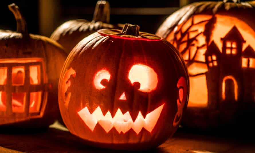Research suggests that 2m discarded pumpkins will end up in the general household bin.