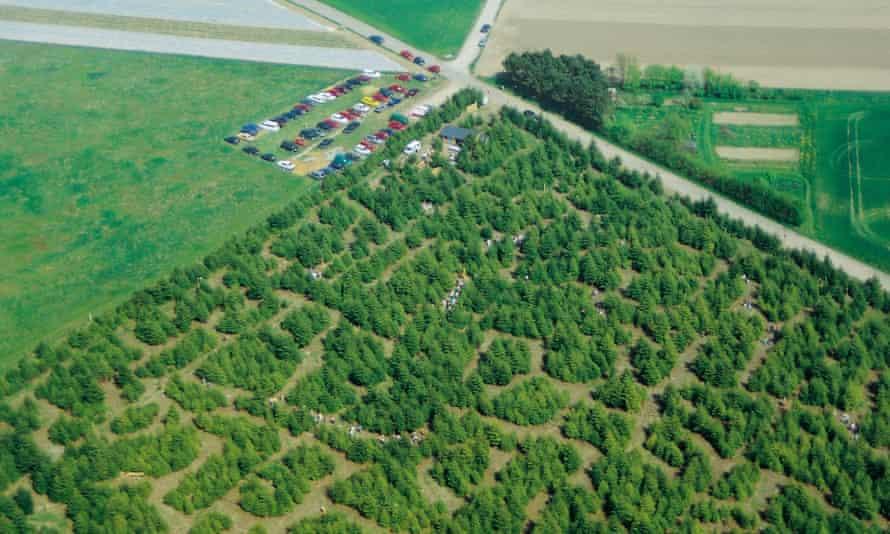 Labyrinten luftfoto1