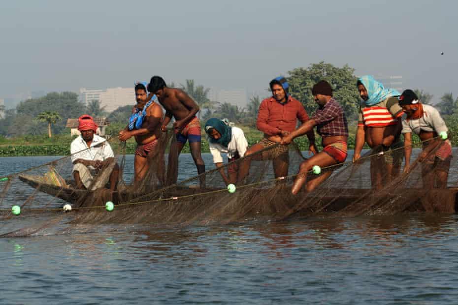Fishermen catch fish on the outskirts of Kolkata, India