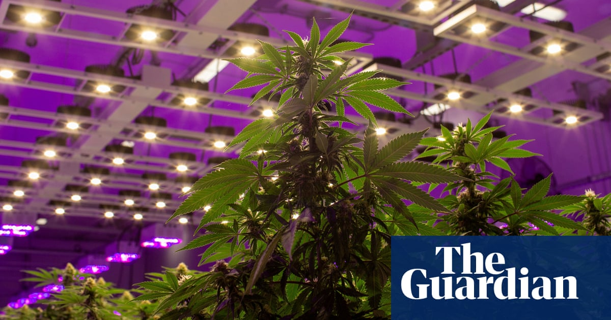 post-image-Luxembourg to be first European country to legalise cannabis