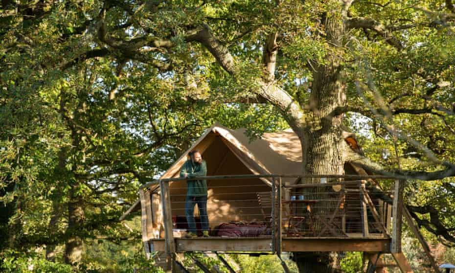 Treehouse tent on Knepp Estate