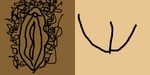 Two vulvas