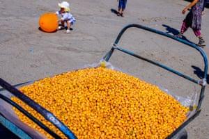 Orange You Glad I Didn't Say Banana, Bukhara,  Uzbekistan, 2017. by Michael Goldrei