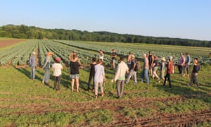 Agricultural initiatives like Hudson Valley Farm Hub are working toward equitable, resilient food systems.