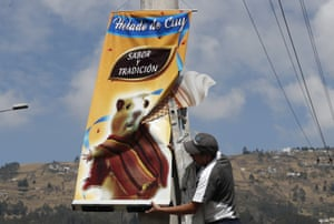 A banner promoting helado de cuy, or guinea pig ice cream, is put up in Quito, Ecuador