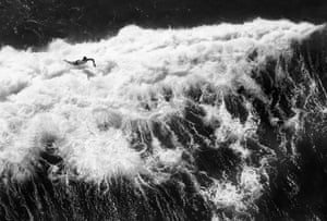 Aerial view of a surfer at Bondi beach