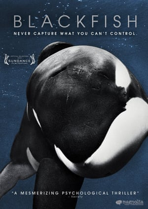 Poster for the Blackfish documentary