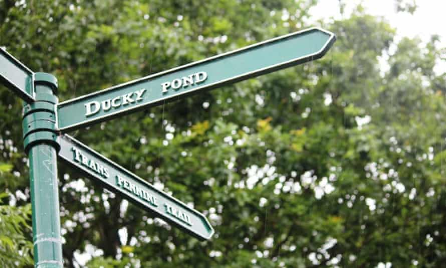 Ducky Pond sign on the Halewood Triangle, Merseyside.