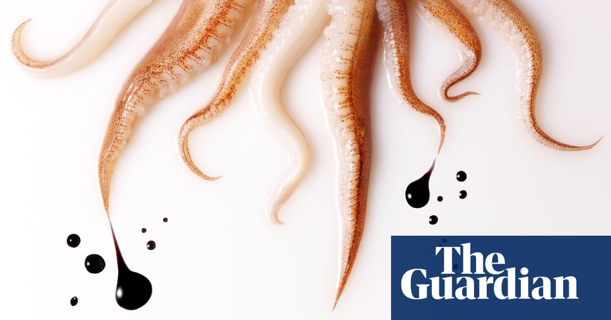 Why do cephalopods produce ink? And what\'s ink made of, anyway ...
