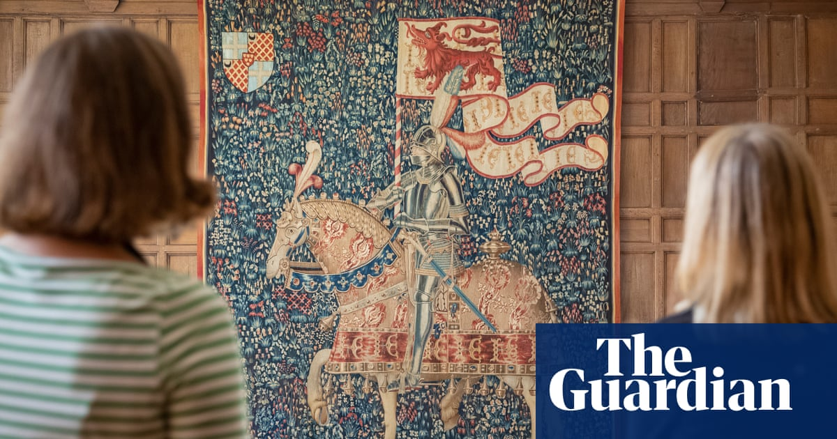 Enigmatic 15th-century tapestry displayed after four-year clean
