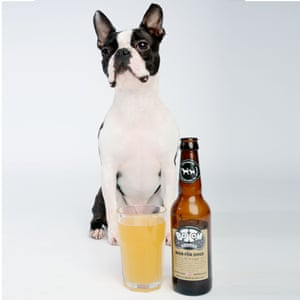 Bottom Sniffer beer for dogs.