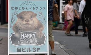A sign for an otter cafe in the Harajuku district of Tokyo, Japan