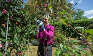 James Newcome, the bishop of Carlisle, wants churches to consider using their land for garden projects to help disadvantaged people.