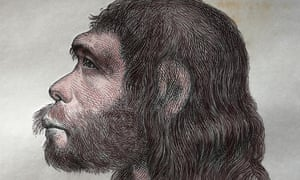 How Neanderthal are you… and can you blame your DNA