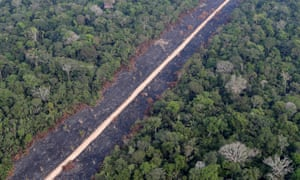 A road runs through a tract of burnt Amazon jungle near Porto Velho, Rondonia state, Brazil.