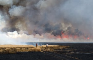 Workers trie to extinguish a fire on a field that broke out due to ongoing drought in Brehna, Germany.