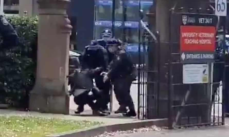 University of Sydney Prof Simon Rice says he was trying to move past a protest when he was pushed to the ground by police with 'disproportionate force'.