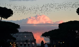 Starlings migrating from northern Europe fly above Rome last year.