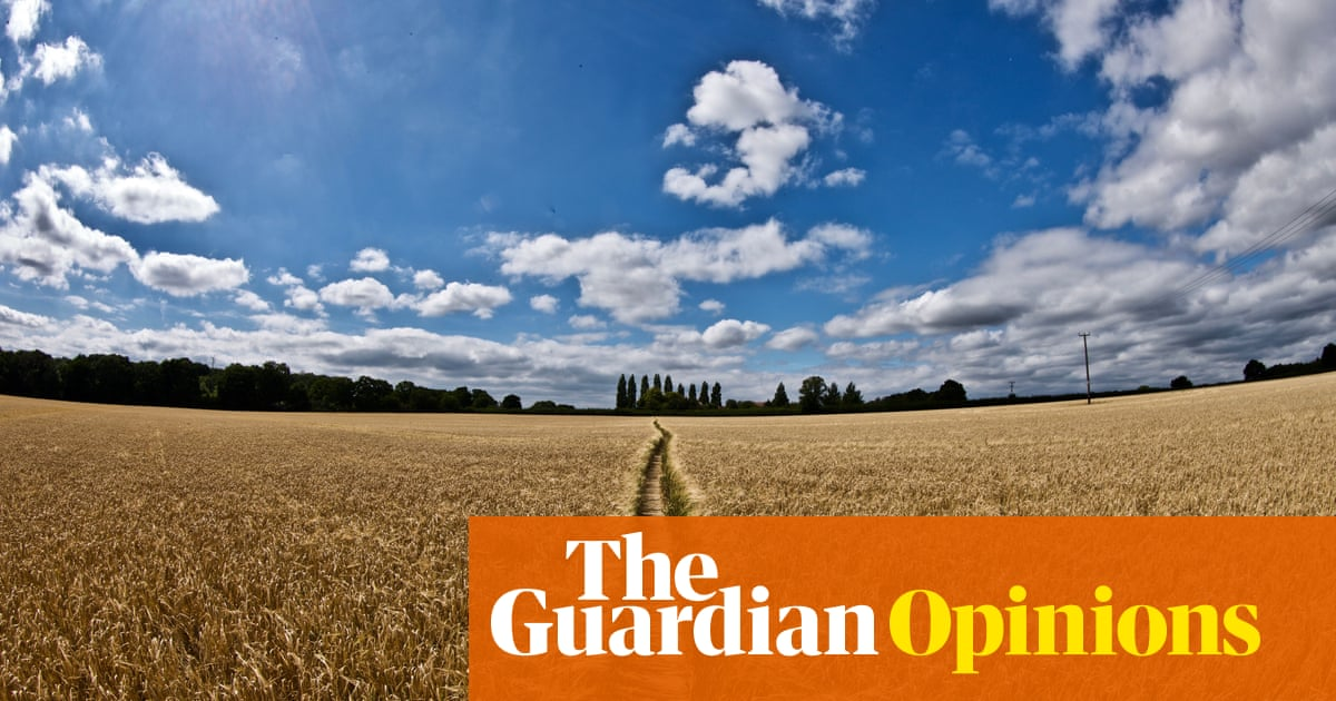 The invisible hand of the market won't protect our food or fields
