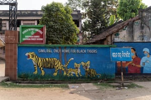 Tiger painting outside the Forest Rangers office