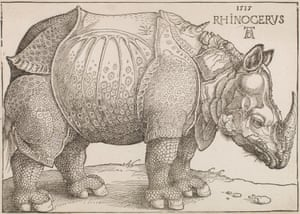 Albrecht Durer's The Rhinoceros.