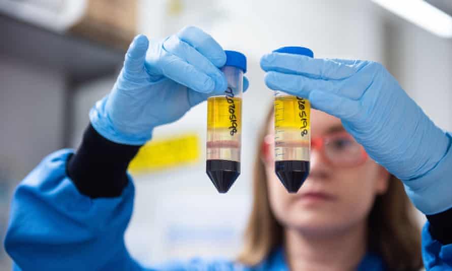 Coronavirus vaccine researcher