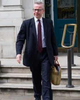 Michael Gove, Brexit deal backer, 10/1.