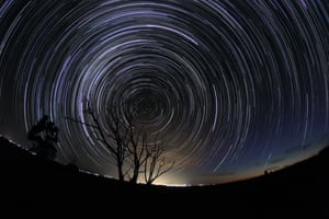 A group of dead trees reach for the heavens, against a backdrop of whirling star trails.