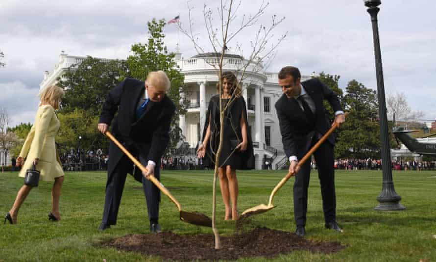 Donald Trump and Emmanuel Macron plant a tree