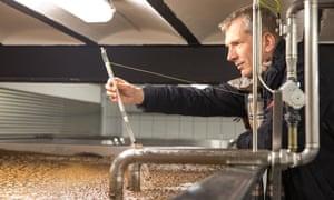 Stefan Fritsche checks the temperature of a vat of fermenting hops.