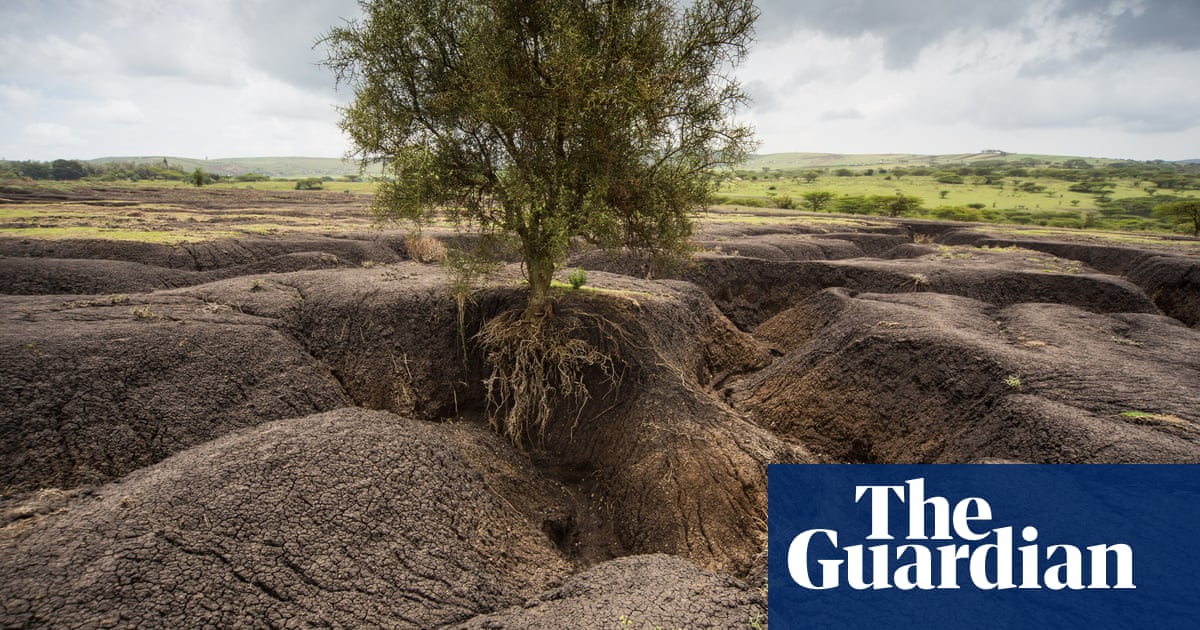 Soil erosion in Tanzania – in pictures   Environment   The