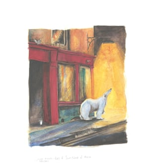 polar bear appears in a street