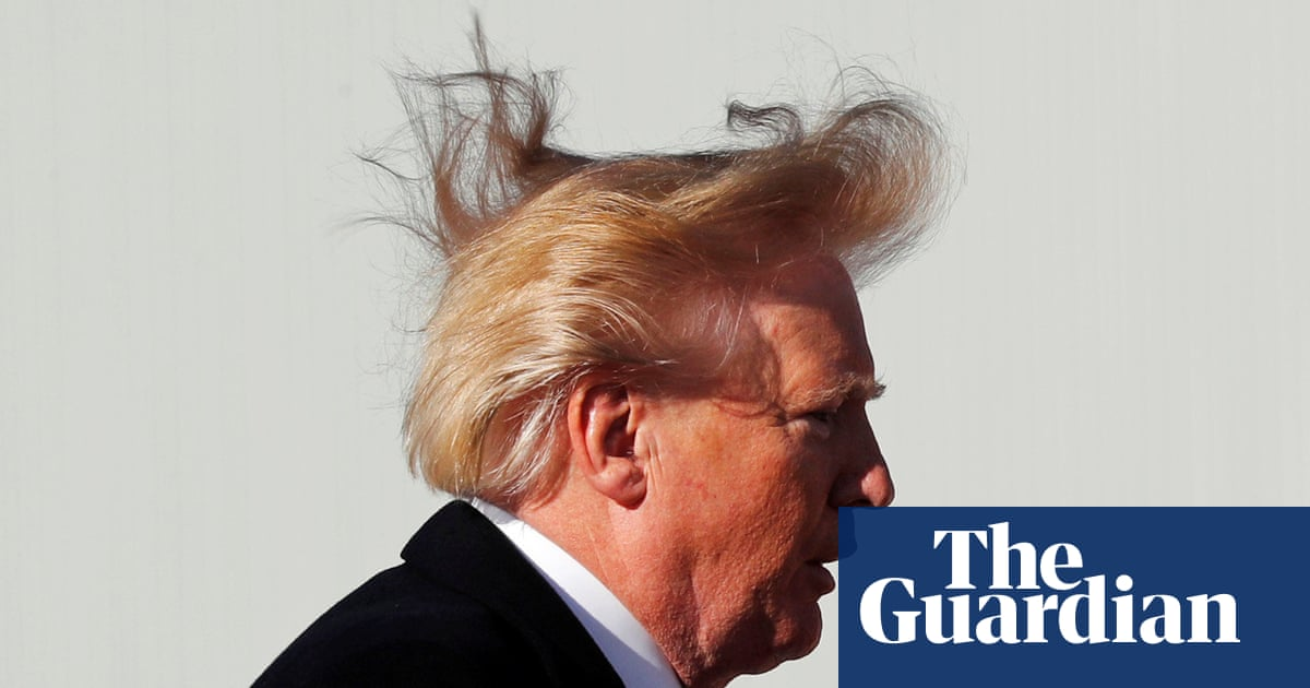 Hair Raising Moment Blustery Wind Lifts Lid On Mystery Of Donald