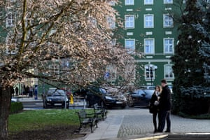 Szczecin, Poland. Cherry trees bloom in January. The persistent mild temperatures caused an early appearance of the flowers, which would otherwise only appear at the end of March