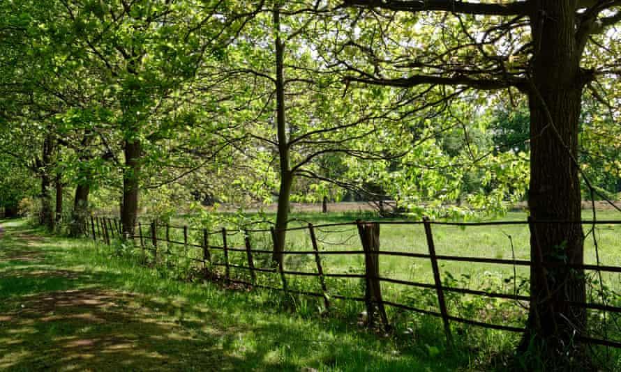 Tekels Park Camberley