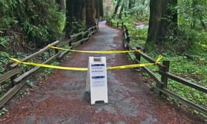 A trail closure sign at the entrance to Muir Woods.