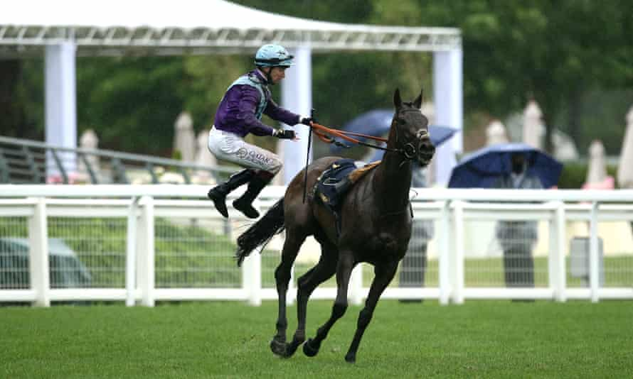 Jockey Oisin Murphy is unseated by Alcohol Free shortly after winning the Coronation Stakes.