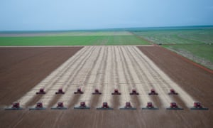 Combines harvest soybeans in Mato Grosso, Brazil