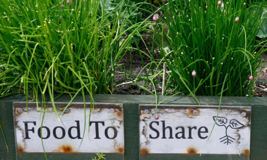 An Incredible Edible plot in Todmorden.