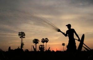 A Cambodian farmer waters farm field in Samroang Tiev at the outskirt of Phnom Penh, Cambodia, Sunday, Nov. 3, 2013. (AP Photo/Heng Sinith)